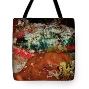 Parrot Fish On Night Dive Tote Bag