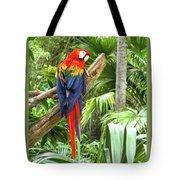 Parrot In Tropical Setting Tote Bag