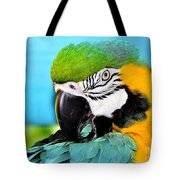 Parrot Time 3 Tote Bag