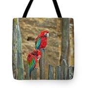 Parrots, Doue-la-fontaine Zoo, Loire, France Tote Bag