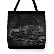 Parson's Chameleon - Unique Prospective Tote Bag