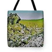 Part Of Large Obsidian Floe In  Newberry National Volcanic Monument, Oregon Tote Bag