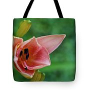 Partially Open Pink Lily Blossom Tote Bag