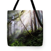 Parting Of The Mist Tote Bag