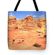 Partly Cloudy Over Coyote South Tote Bag