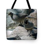 Partridge Pair Reno Nv Tote Bag