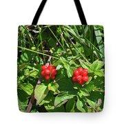 Partridgeberries Tote Bag