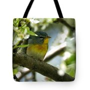 Parula In A Pear Tree Tote Bag