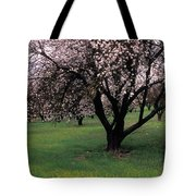 Paso Robles Orchard Tote Bag