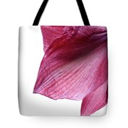 Passing Beauty Tote Bag
