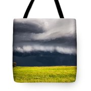 Passing By - Storm Passes By Lone Tree In Western Nebraska Tote Bag