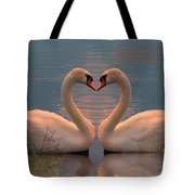 Passion At Sunset Tote Bag
