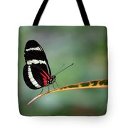 Passion-vine Butterfly 2017 Tote Bag