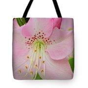 Pastel Pink  Azalea Tote Bag