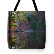 Pastels In Reflection  Tote Bag