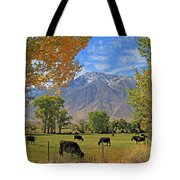 Pasture With A View Tote Bag