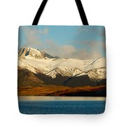 Patagonia Panorama Tote Bag
