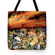 Patagonian Shore Tote Bag