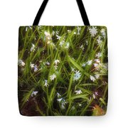 Patch Of Spring Tote Bag