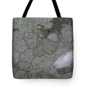 Patches Of Grey And Life Tote Bag