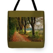 Path Along The Horses Meadow On The Farm Lovedayvale L A S Tote Bag
