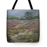 Path From East Beach Tote Bag