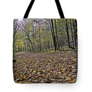 Path Home - Kettle Moraine 10-14-16 Tote Bag