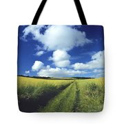 Path In A Countryside Tote Bag