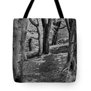 Path In Crownest Woods Tote Bag