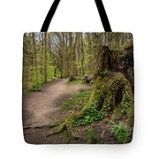 Path In Judy Woods Tote Bag