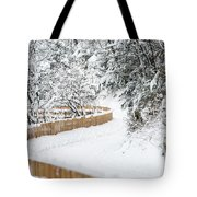 Path In Snow Tote Bag