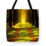 Path In The Forest 715 - Painting Tote Bag
