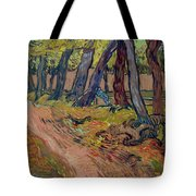 Path In The Garden Of The Asylum, By Vincent Van Gogh, 1889, Kro Tote Bag