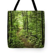 Path In The Woods Tote Bag