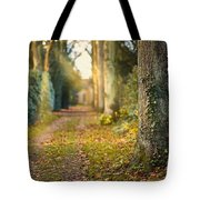 Path Into The Light Tote Bag