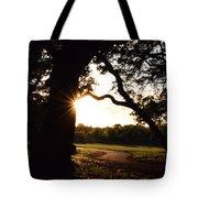 Path Into The Sun Tote Bag