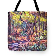Path Near Pandapas Tote Bag