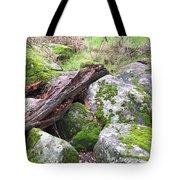 Path Not Taken Tote Bag