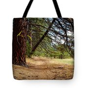 Path Of Enlightenment Tote Bag
