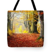 Path Of Red Leaves Towards Light In Fall Forest Tote Bag