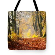 Path Of Red Leaves Towards Light Tote Bag