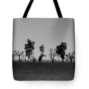 Path Of Trees On Farm Tote Bag