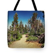 Path On Top Of Mt. Howard, Wallowa Or Tote Bag