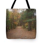 Path On Wilsons Mountain Tote Bag