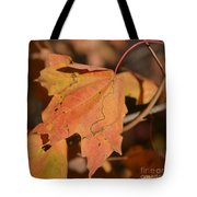 Path Through A Leaf Tote Bag