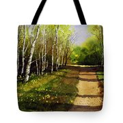 Path Through Silver Birches Tote Bag