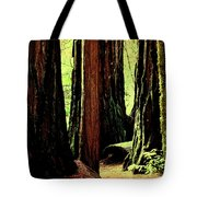 Path Through The Forest Edge . 7d5432 Tote Bag