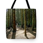 Path Through The Woods. Tote Bag