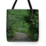 Path To Adventure Tote Bag