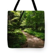 Path To Conkle's Hollow Tote Bag